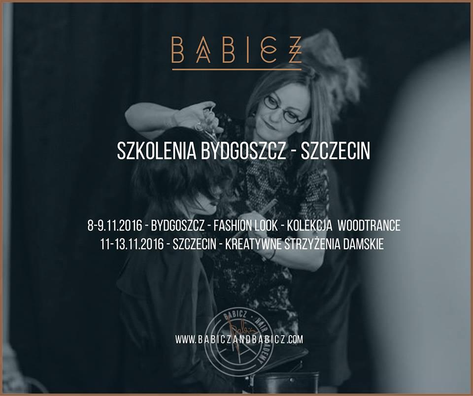 Akademia Babicz
